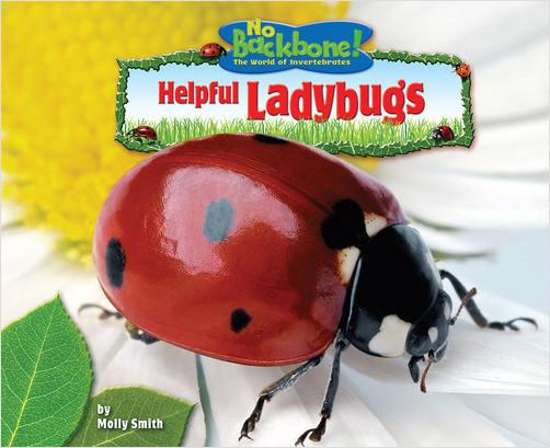 Cover: Helpful Ladybugs