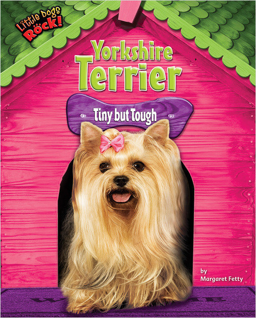 Cover: Yorkshire Terrier