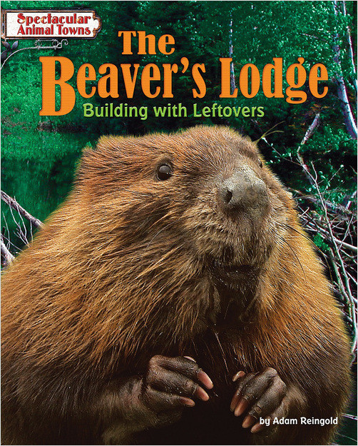 Cover: The Beaver's Lodge