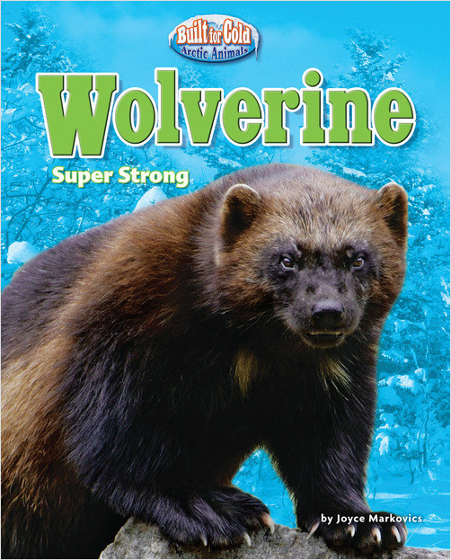 Cover: Wolverine