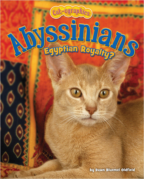 Cover: Abyssinians
