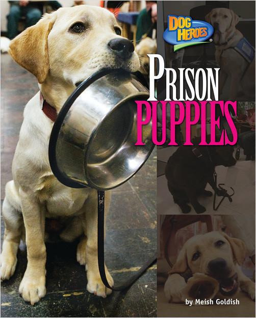 Cover: Prison Puppies