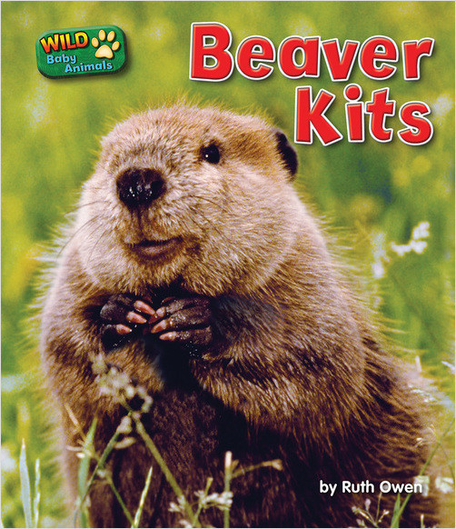 Cover: Beaver Kits