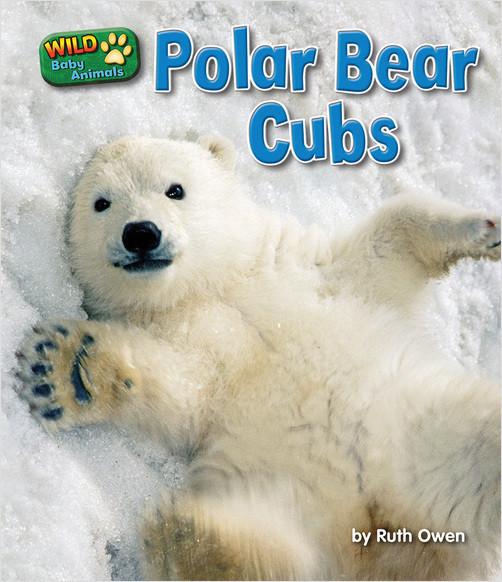 Cover: Polar Bear Cubs