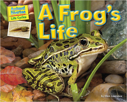 Cover: A Frog's Life