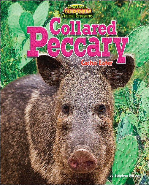 Cover: Collared Peccary