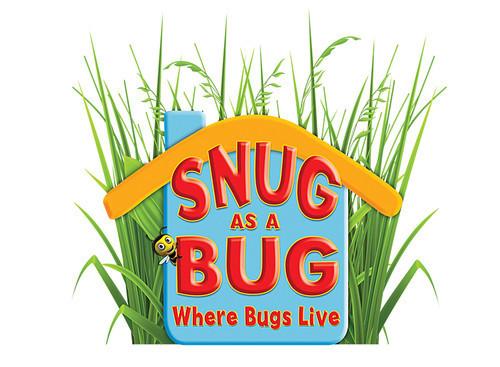 Cover: Snug as a Bug: Where Bugs Live