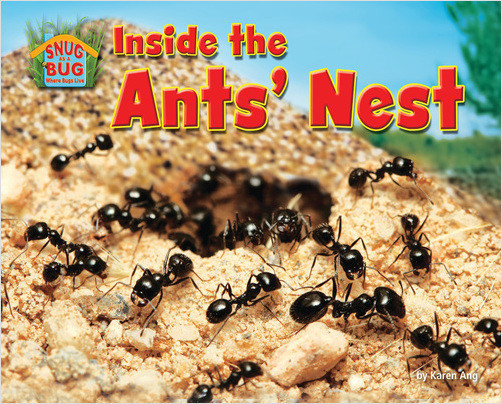 Cover: Inside the Ants' Nest