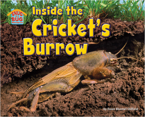 Cover: Inside the Cricket's Burrow