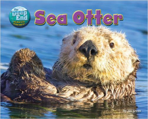 Cover: Sea Otter