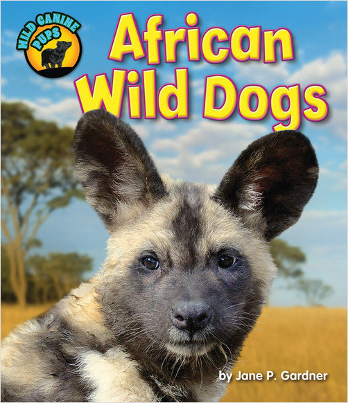 Cover: African Wild Dogs