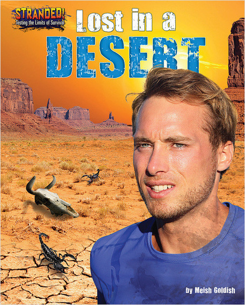 Cover: Lost in a Desert