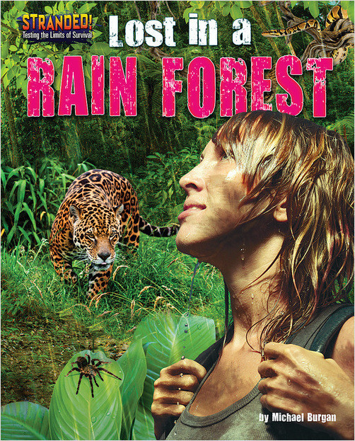 Cover: Lost in a Rain Forest