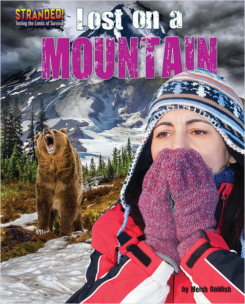 Cover: Lost on a Mountain