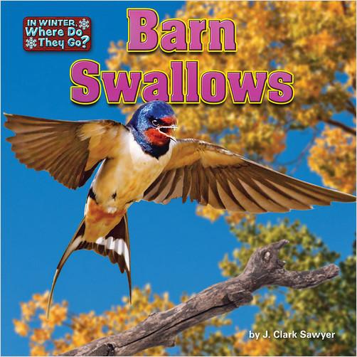 Cover: Barn Swallows
