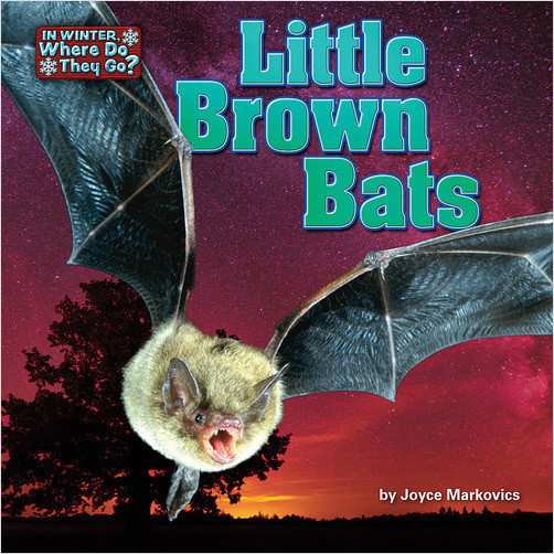 Cover: Little Brown Bats