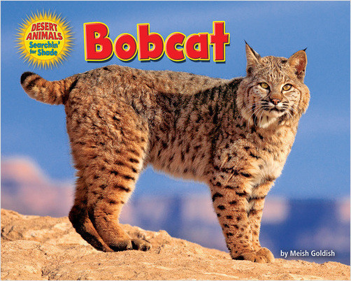 Cover: Bobcat