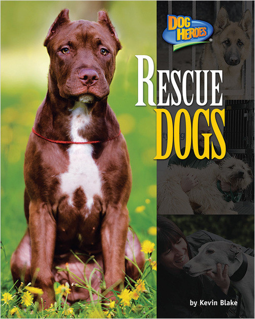 Cover: Rescue Dogs