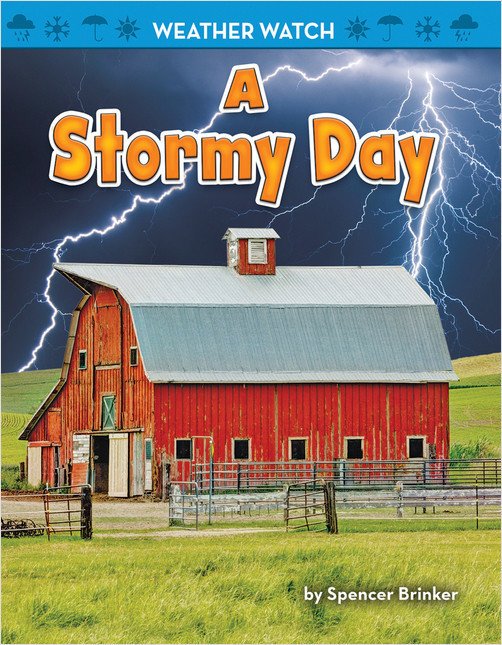 Cover: A Stormy Day