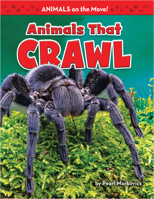 Cover: Animals That Crawl