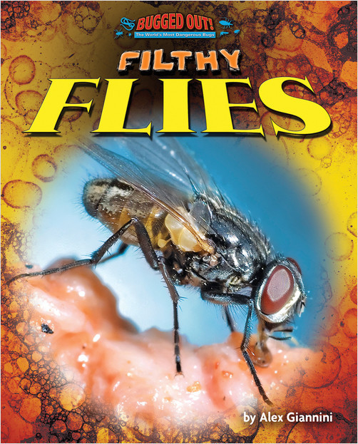 Cover: Filthy Flies
