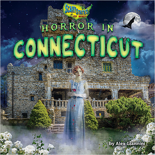 Cover: Horror in Connecticut