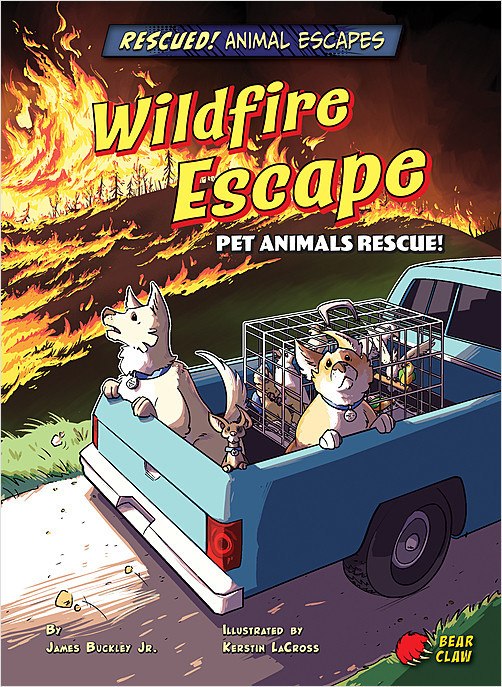 Cover: Wildfire Escape