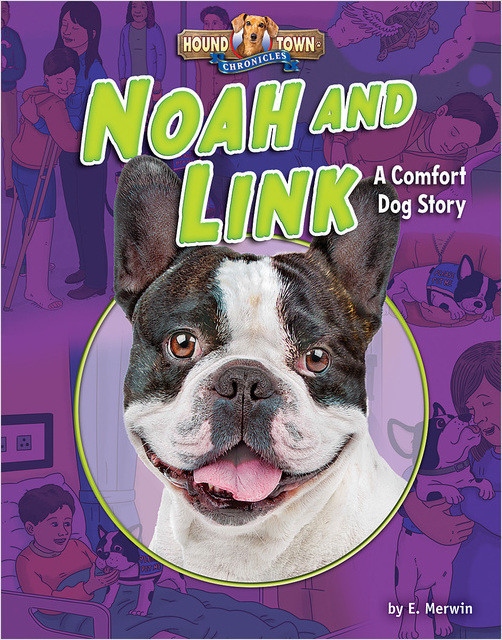 Cover: Noah and Link