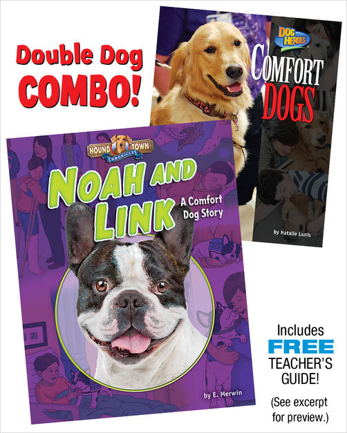 Cover: Noah and Link: A Comfort Dog Combo