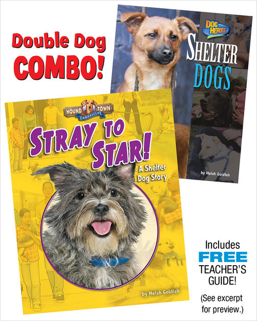 Cover: Stray to Star! A Shelter Dog Combo