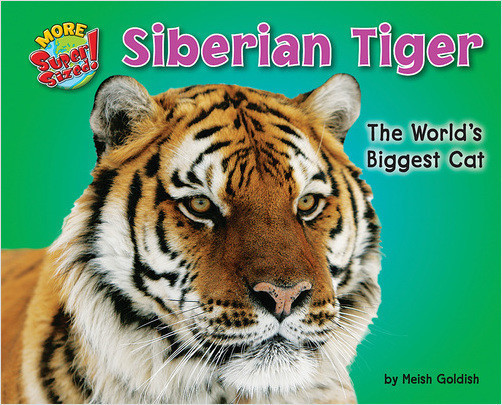 Cover: Siberian Tiger