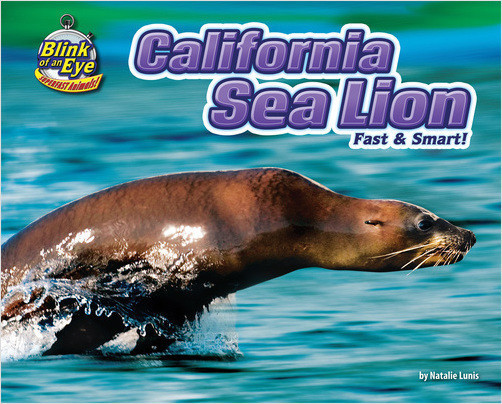 Cover: California Sea Lion