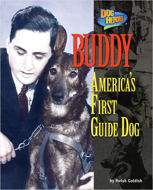 Cover: Buddy