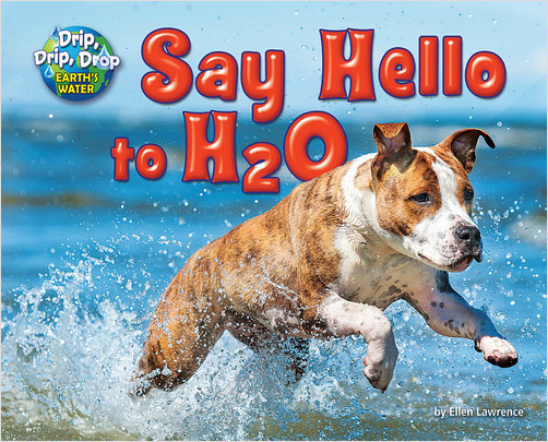 Cover: Say Hello to H2O