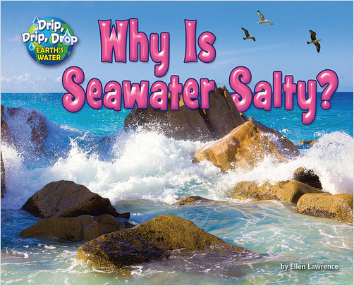 Cover: Why is Seawater Salty?
