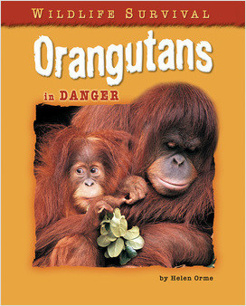 Cover: Orangutans in Danger