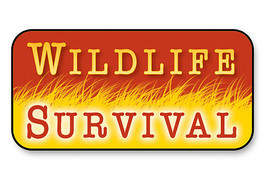 Cover: Wildlife Survival
