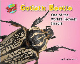 Cover: Goliath Beetle