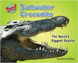 Cover: Saltwater Crocodile