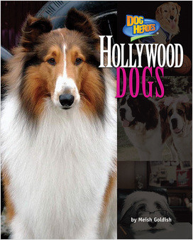Cover: Hollywood Dogs