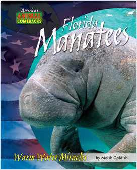 Cover: Florida Manatees