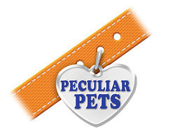 Cover: Peculiar Pets