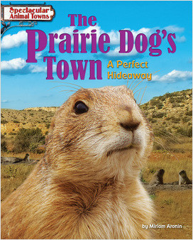 Cover: The Prairie Dog's Town