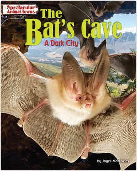 Cover: The Bat's Cave
