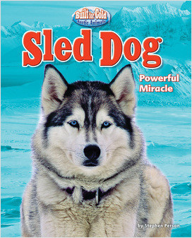 Cover: Sled Dog: Powerful Miracle