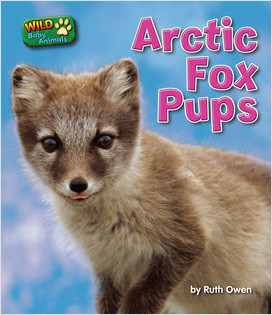 Cover: Arctic Fox Pups