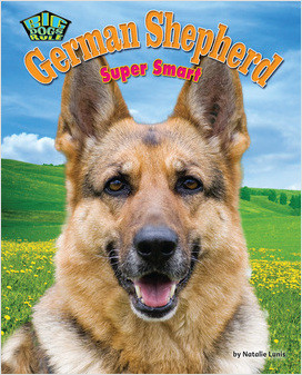Cover: German Shepherd