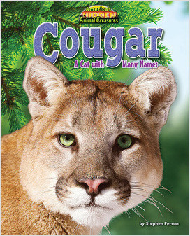 Cover: Cougar