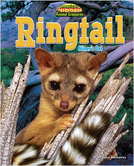 Cover: Ringtail: Miner's Cat