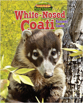 Cover: White-Nosed Coati